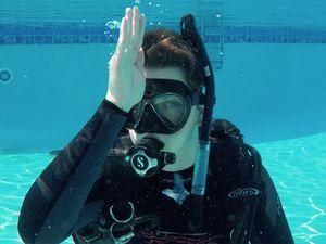 scuba hand signals marine life shark