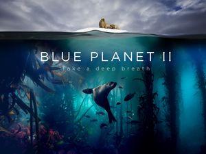 blue planet ii trailer